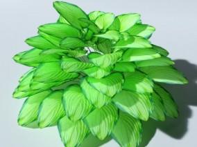 园林植物 灌木植物 盆景植物 花草植物 绿叶植物 室内花卉 装饰花草 3d模型
