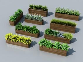 现代绿植盆栽花箱3d模型