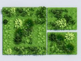 现代绿植墙植物墙3d模型