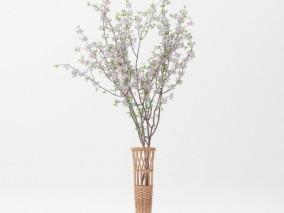 白色花枝 樱花篮子 樱花 花篮 竹花篮 花草 盆栽植物 小花小草 竹篮 鲜花篮子 鲜花篮 花卉花篮
