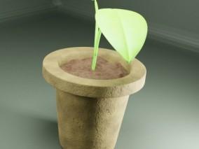 花盆 植物 草 盆栽 3d模型