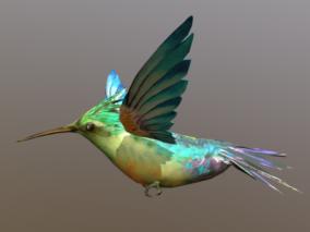 飞翔蜂鸟3D模型