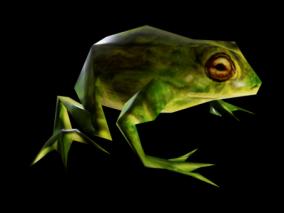动物世界 青蛙 小青蛙 带动画