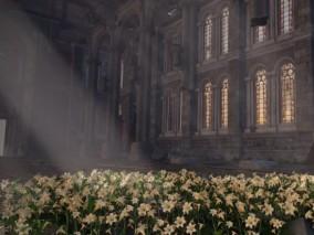 废弃教堂  教堂   礼堂   废墟   花朵 3d模型