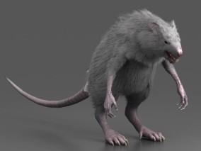 大老鼠 老鼠精 老鼠怪 小妖怪 巨鼠 变异老鼠 3d模型