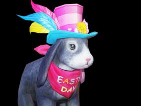 兔子 灰色兔子 灰兔