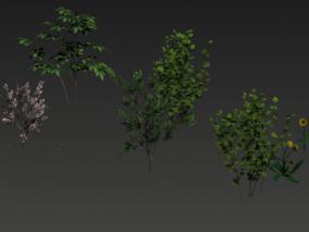 植物 树木 花草 3d模型