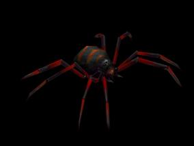 蜘蛛 黑寡妇 怪物