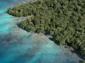 岛屿 海岛 小岛 海岸 海 海边 海滩 3d模型