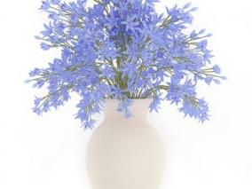 鲜花 花瓶 玫瑰花 白玫瑰 盆栽 手捧花 花 花朵 野花 花草 鲜花 花儿 花园 花丛 花卉 小花
