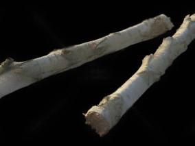 树干 枯树 树枝堆 木材 树木 树干 松枝 圆木 腐木  3d模型