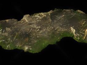 树干 枯树 树枝 木头 树根 树头  树木 树干 松枝 圆木 腐木 3d模型