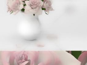 鲜花 花卉 盆栽 摆饰 玫瑰花