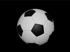 足球 体育用品 球类