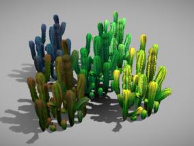 卡通仙人掌 仙人球 多肉植物 沙漠植物 观赏盆栽仙人掌 盆景植物 3d模型