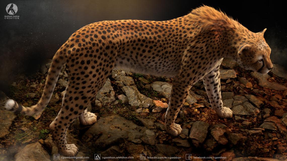 猎豹 | 来自 cganirban