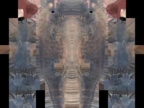动物3d贴图