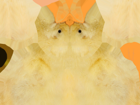 小鸡3d贴图